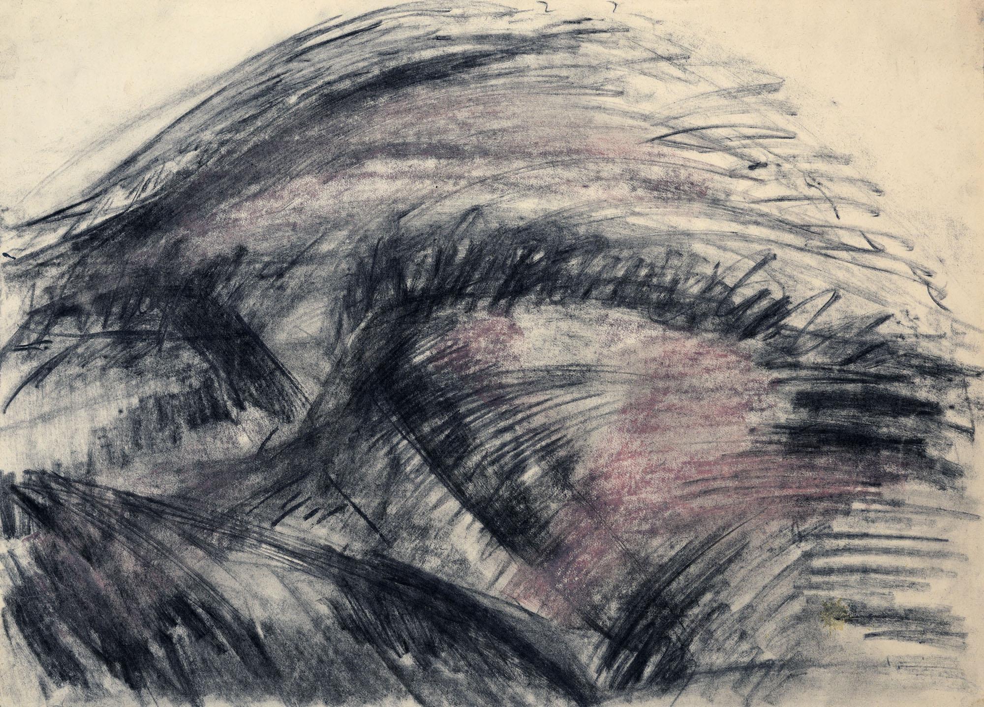 Palkó Ernő • Landscape 2 • charcoal • 70×50 cm