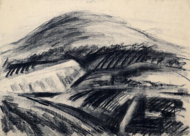 Palkó Ernő • Landscape 1 • charcoal • 70×50 cm